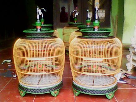 Sangkar Anggraito
